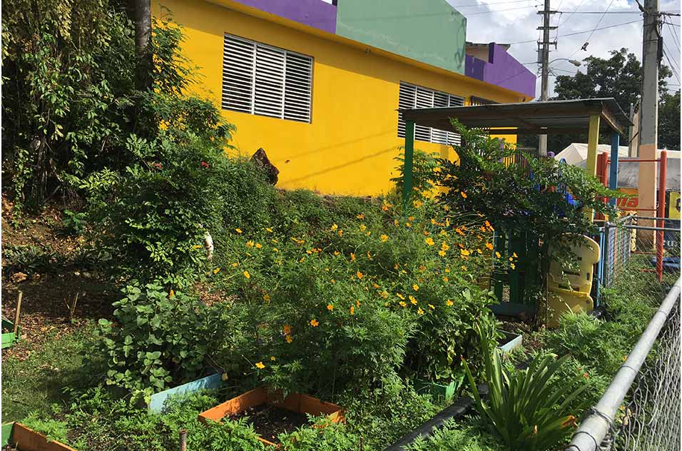 This community garden provides fresh, healthy food for residents of the Cantera neighborhood in San Juan, Puerto Rico.