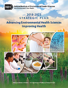 Strategic Plan 2018-2023 Cover Page