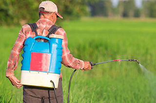 Man applying pesticides to field