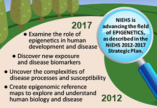 NIEHS is advancing the field of Epigenetics as described in the NIEHS 2012-2017 Strategic Plan
