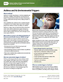 Asthma and Its Environmental Triggers