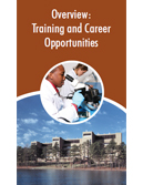 Training and Career Development Opportunities