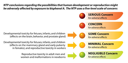 NTP conclusions regarding the possibilities that human development or reproduction might be adversely affected by exposure to bisphenol A. The NTP uses a five-level scale of concern.
