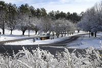 Snow Covered NIEHS Entrance
