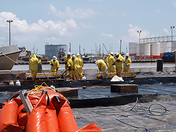 In May 2010, cleanup workers in Venice, Louisiana,
