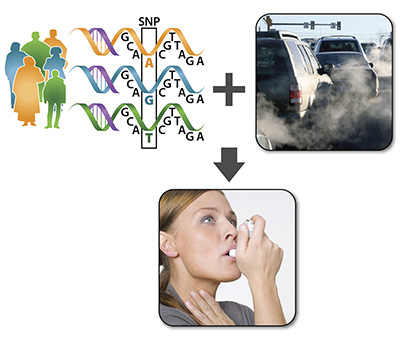 image of DNA graphic, exhaust from cars, and woman using inhaler