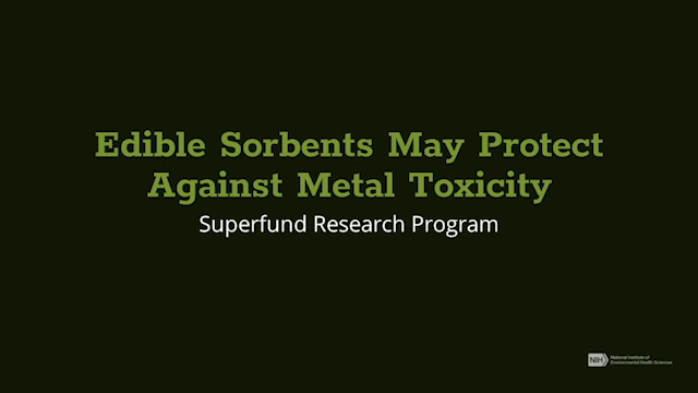 Edible Sorbents May Protect Against Metal Toxicity