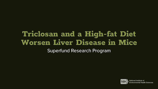 Superfund Research Program - Triclosan and a High-fat Diet Worsen Liver Disease in Mice