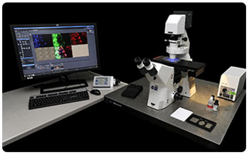 Automated inverted epifluorescent microscope