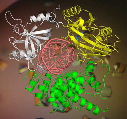A computer render of biological structures.