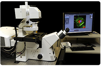 Zeiss LSM 780 inverted confocal microscope