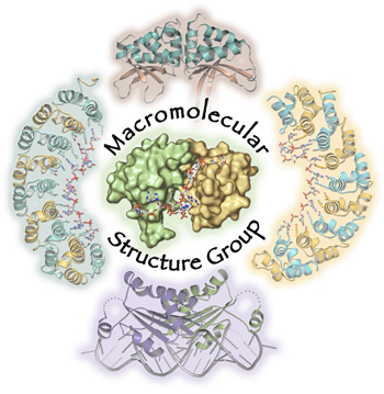 Macromolecular Structure Group 2012 Image