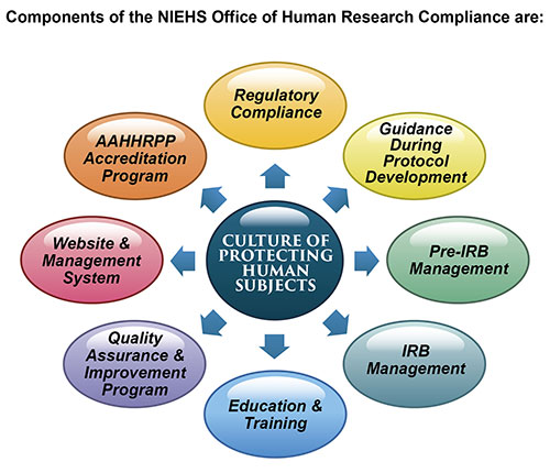 Components of the NIEHS Office of Human Research Compliance are Regulatory Compliance, Guidance During Protocol Development, Pre-IRB Management, IRB Management, Education & Training, Quality Assurance & Improvement Program, Website & Management System, AAHHRPP Accreditation Program, all comprising the Culture of Protecting Human Subjects