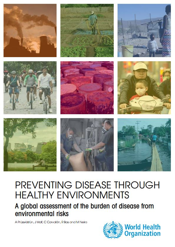 Preventing Disease Through Healthy Environments flyer