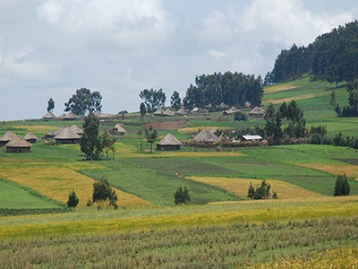 A project village in the Oromia region, Ethiopia.