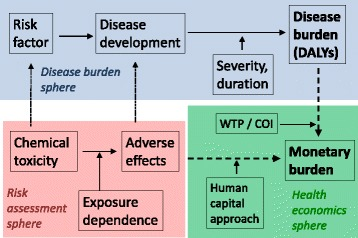 costs of exposure-dependent adverse effects