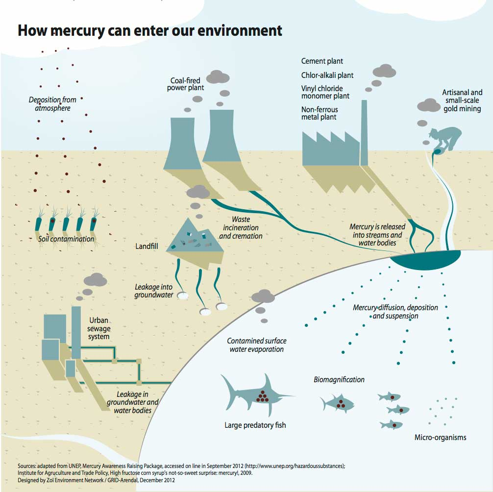 How mercury can enter our environment