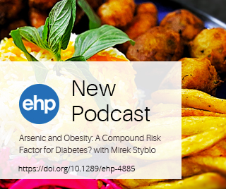 EHP interview with Mirek Styblo on Arsenic and Obesity
