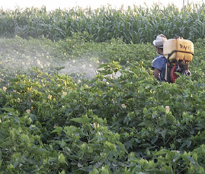 safe use of pesticides in agriculture pdf