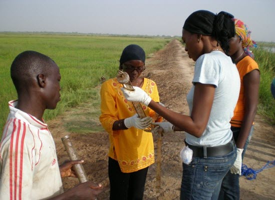 After training at OSU, Anna Ndiaye Traore (left) returned to Senegal to teach colleagues how to deploy passive sampling devices for pesticide monitoring in an irrigation canal