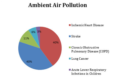 ambient air pollution caused by deaths - breakdown of disease