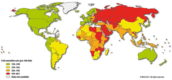 CVD Mortality Rates per 100,000 people