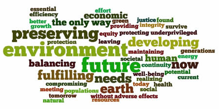 "What does ""sustainable development"" mean to you?"