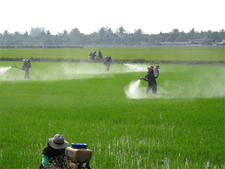 Organophospates and pyrethroids are the major pesticide classes used for crop protection in Thailand.