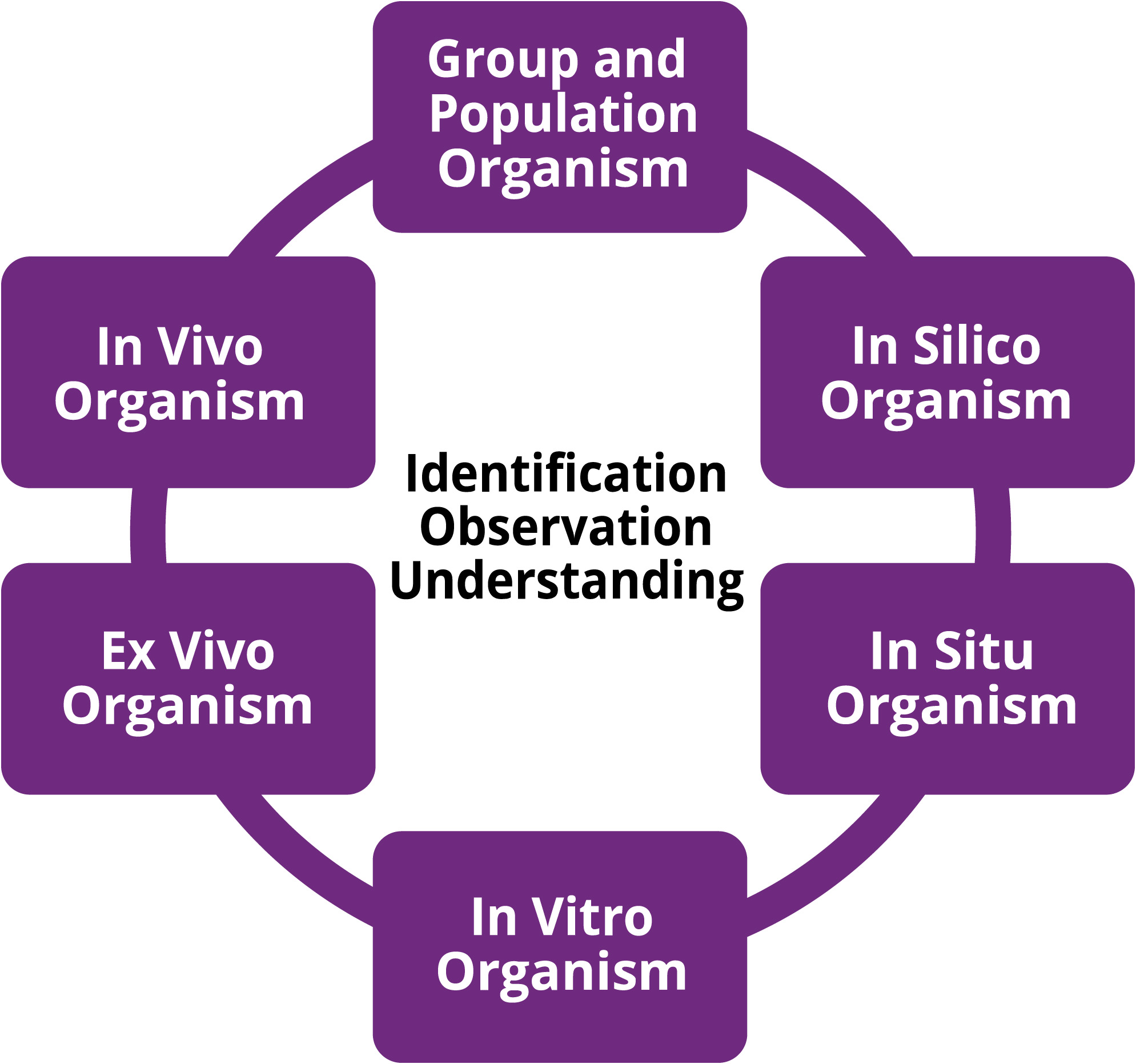 This Fundamental Questions ring is represented by a purple ring and includes six types of experimental settings in which environmental health researchers tend to conduct their work. These settings include in vitro, ex vivo, in vivo, in silico and in situ. The last setting is group or population, which would include epidemiological type research.