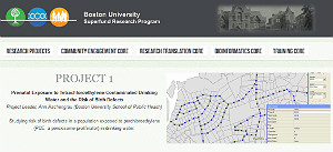 Screenshot of the Boston Superfund webpage