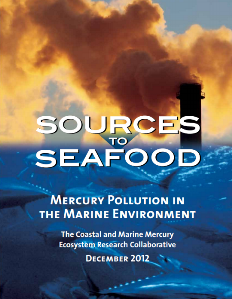 Sources to Seafood: Mercury Pollution in the Marine Environment