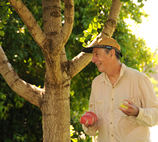 A man beneath a tree holds several water balloons.