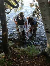 High school students collect samples as part of the project.