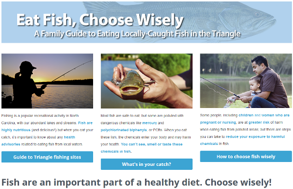 Screenshot of the Eat Fish, Choose Wisely Homepage