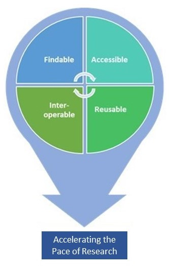 Findable, Accessible, Reusable, Interoperable, Accelerating the Pace of Research