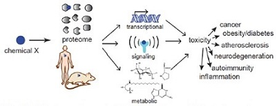 Proteome-wide interactions of chemcials and their effects