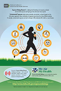 Exposure Biology Research infographic – silhouette of woman running, encircled by diseases and exposure sources. Exposure Biology Research is challenged with detecting and measuring combined environmental exposures and figuring out how the human body responds. Environmental exposures include what we breathe, eat or drink, or absorb through our skin. Each person experiences these combinations of exposures every day and can have different reactions. For example, environmental exposures can lead to changes in DNA, adversely affect health, or cause diseases. A key part of Exposure Biology Research is developing technology – such as cell and smart phones, monitors, sensors, cameras, computers, and software – to measure exposures and biological responses. The My Air, My Health Challenge was one example where researchers created a personal, portable, and wearable air pollution sensor.