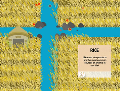 Rice and rice products are the most common sources of arsenic in our diet.