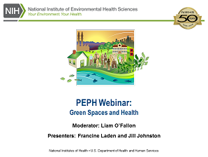green spaces webinar